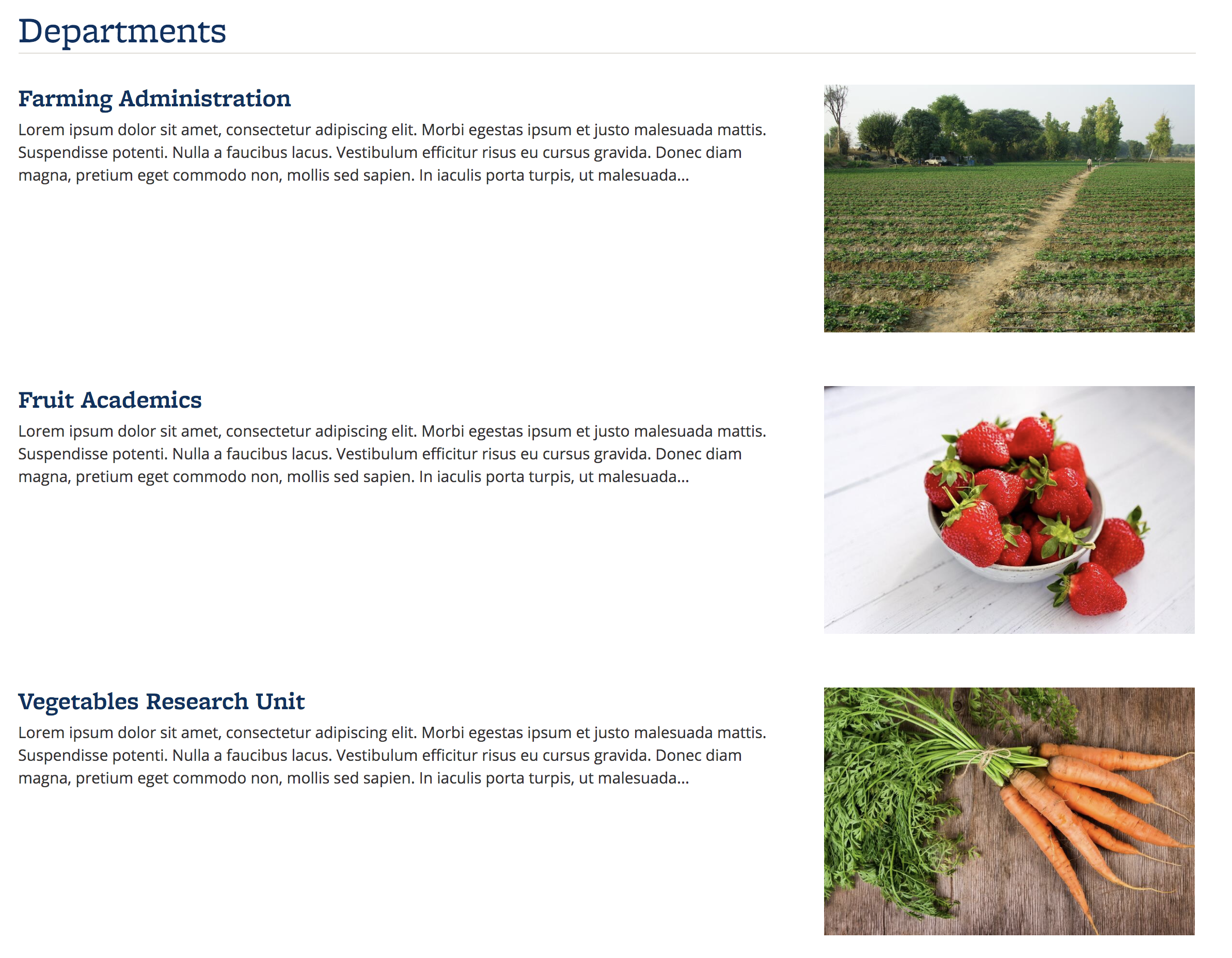 Screenshot of Departments content, with featured images