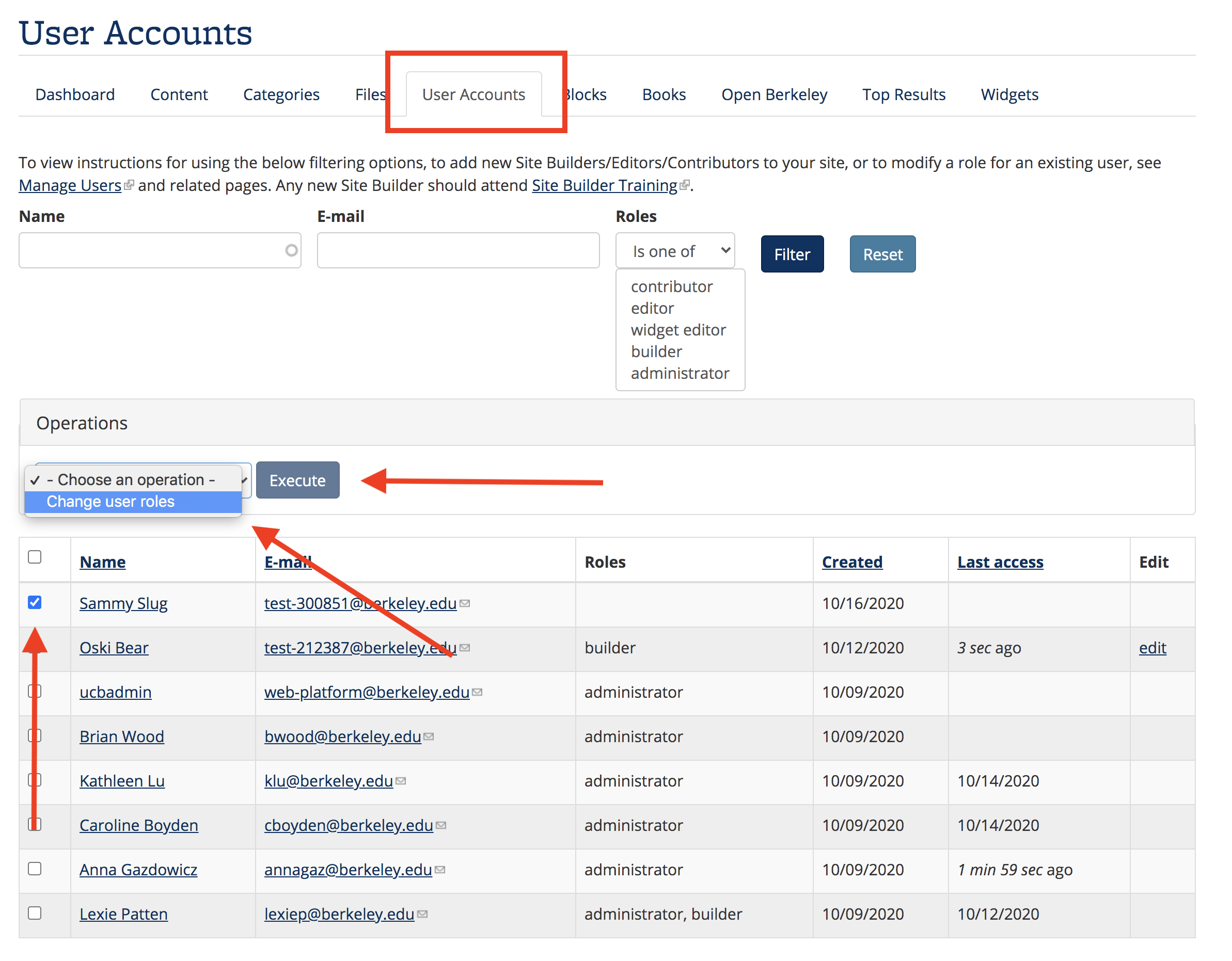 Screenshot of User Accounts, with new user selected