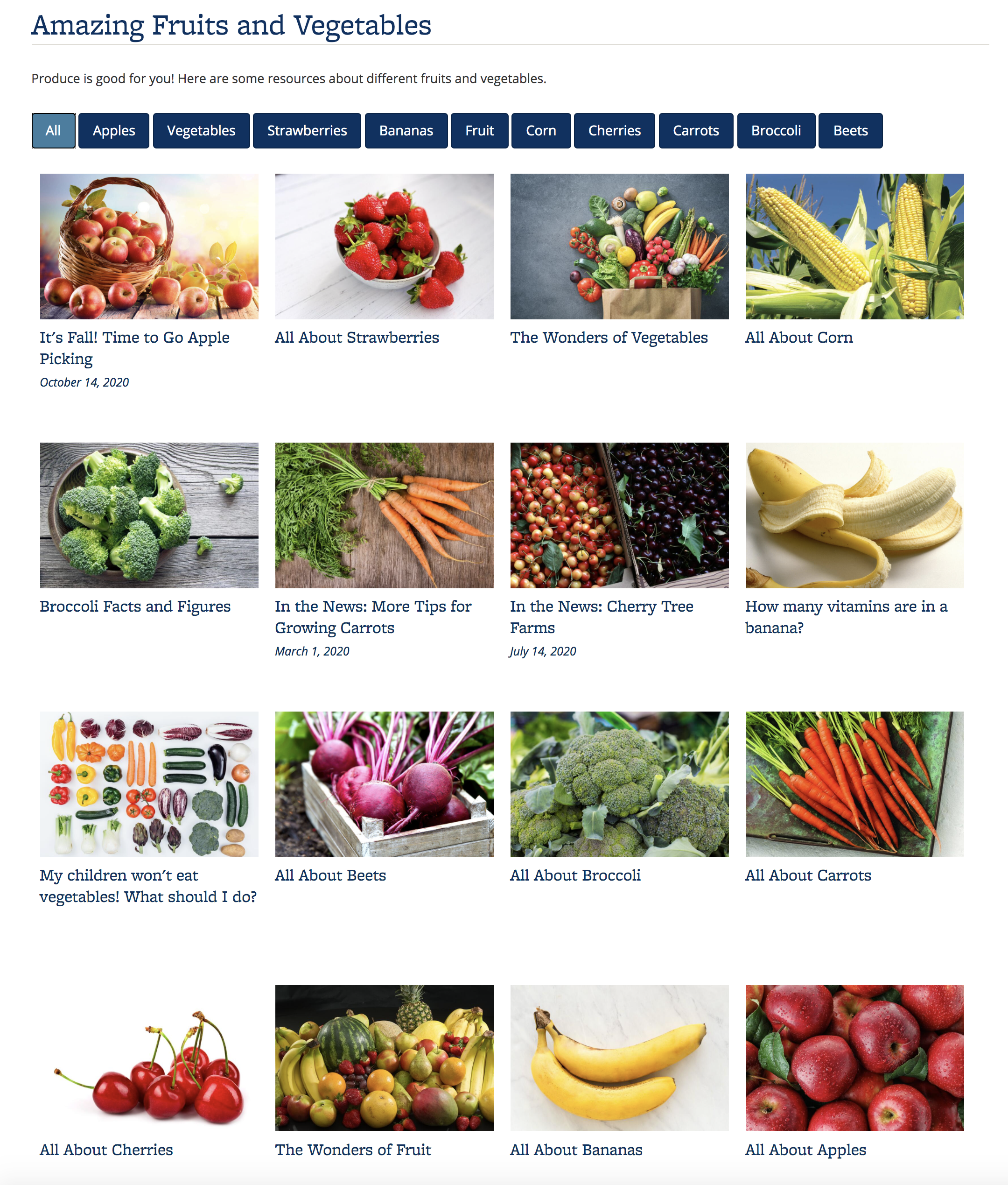 Screenshot of a Portfolio with content items about fruits and vegetables